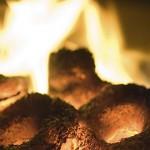 Componentes de las calderas de biomasa