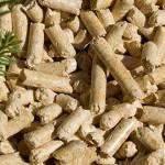 Ventajas de las calderas de biomasa