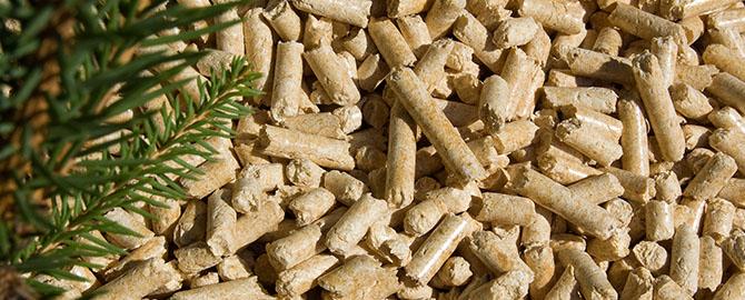 Ventajas de las calderas de biomasa. Pellets, combustible para las estufas de biomasa.