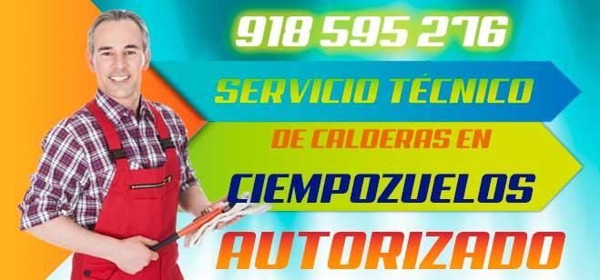 Servicio tecnico de calderas en Ciempozuelos