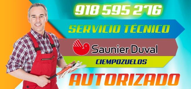 Servicio Tecnico Saunier Duval Ciempozuelos