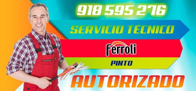 Servicio Tecnico Ferroli Pinto