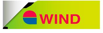 Servicio técnico generadores de calor y calderas Wind en Madrid