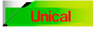 Servicio técnico calderas unical en Madrid
